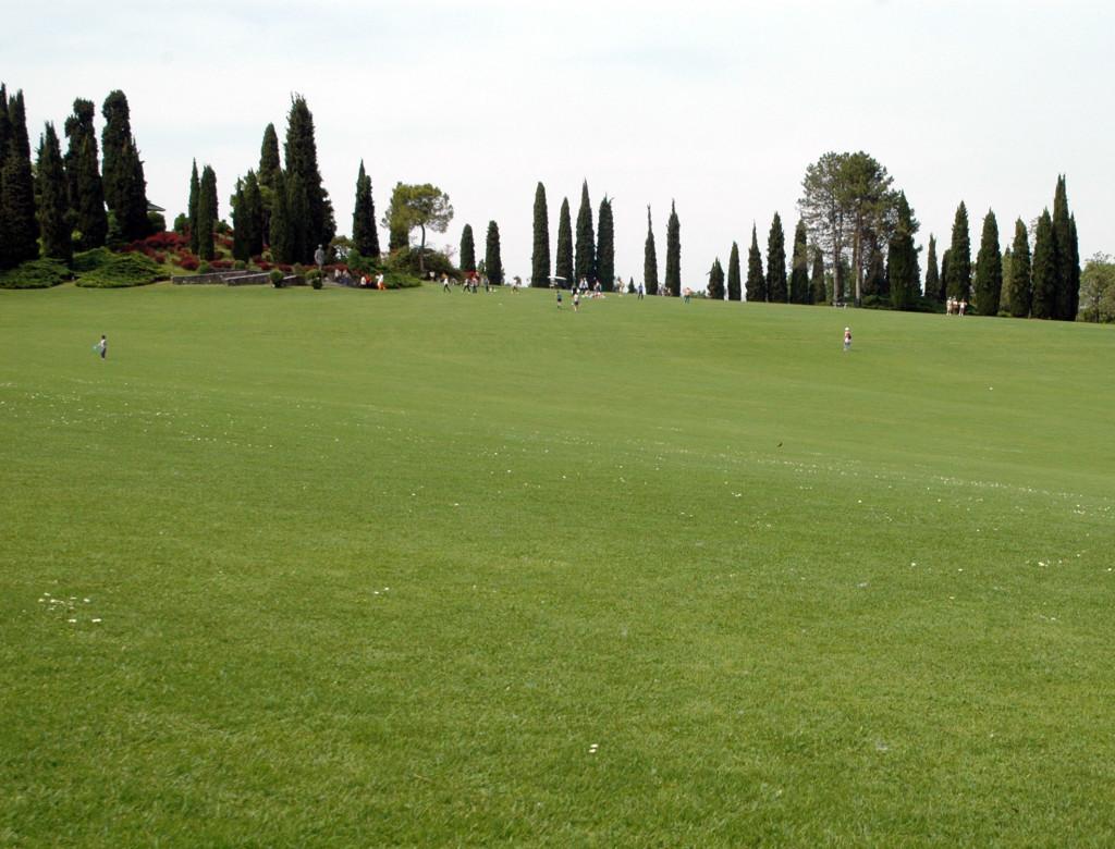 grande tappeto erboso parco sigurtà