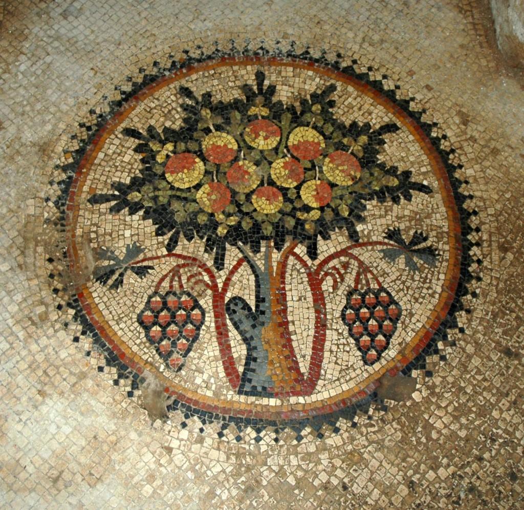 parco archeologico madaba albero vita