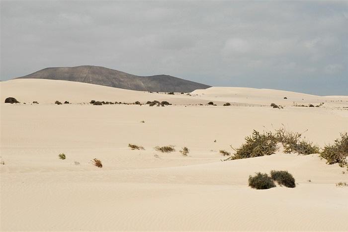 dune di sabbia corralejo_cosa vedere a fuerteventura