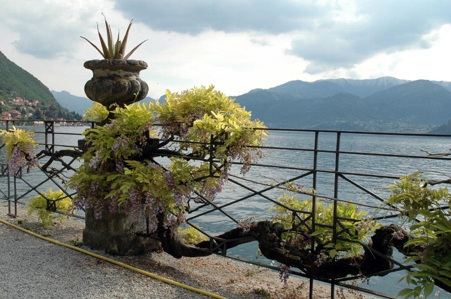 giardini di villa monastero i più belli del lago di como