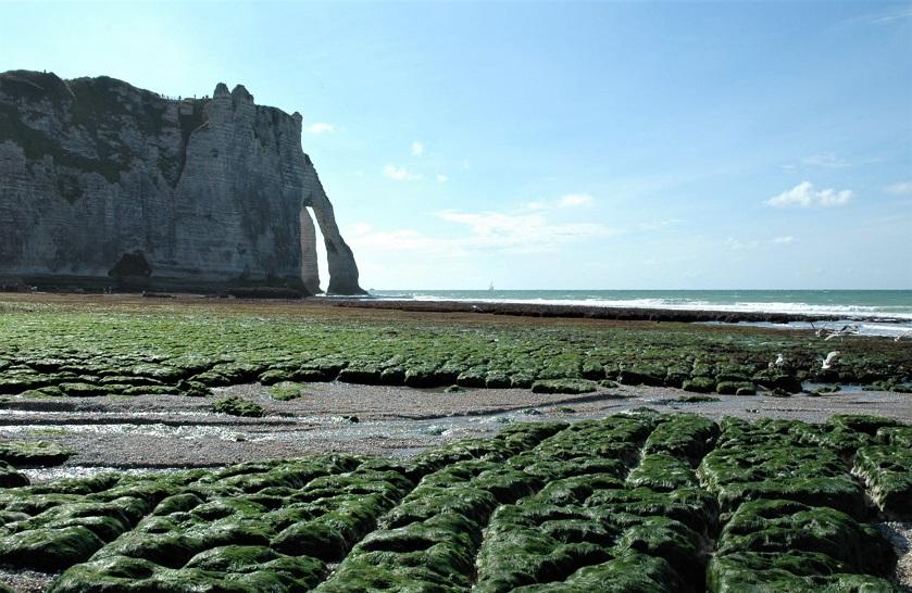 spiaggia di etretat con le alghe_normandia
