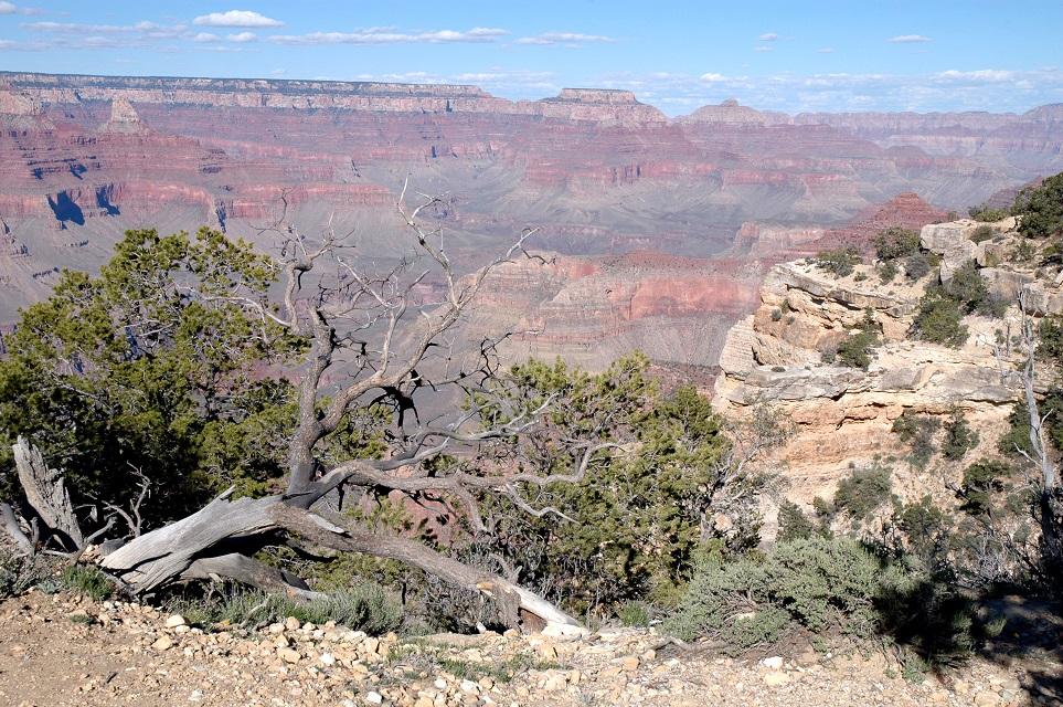 Uno dei view point dell'Hermits Rest Route: cosa vedere al Grand Canyon