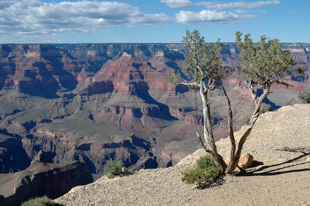 View Point del South Rim del Grand Canyon