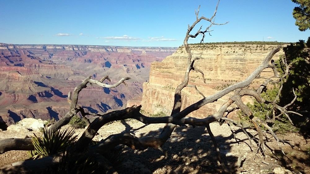 Cosa vedere al Grand Canyon: view point