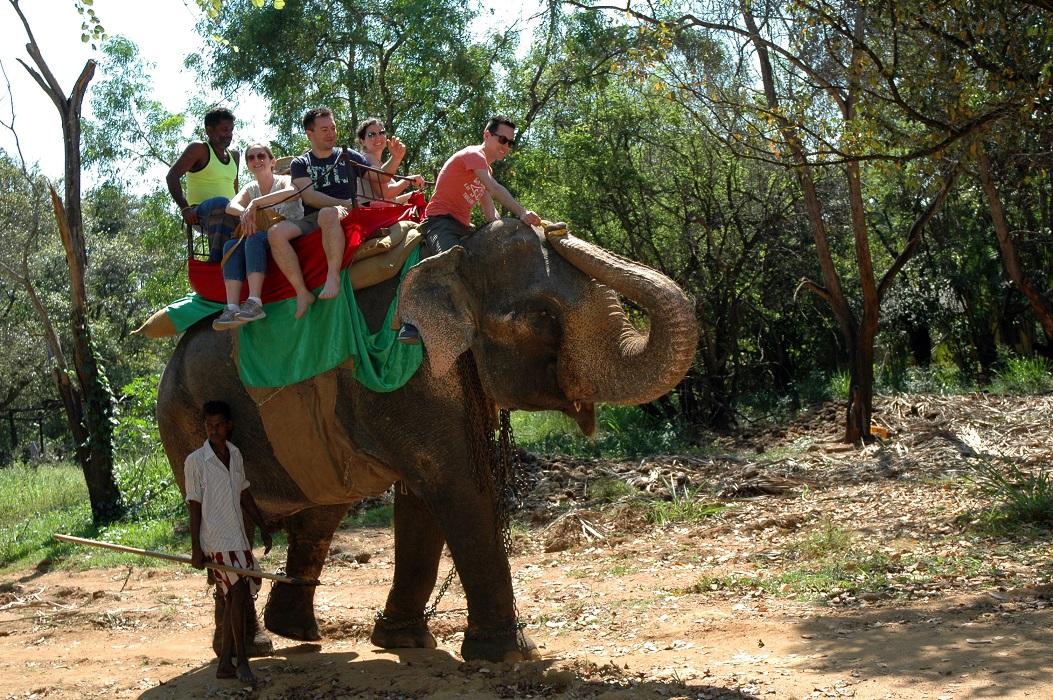 Escursione sul dorso dell'elefante in Sri Lanka