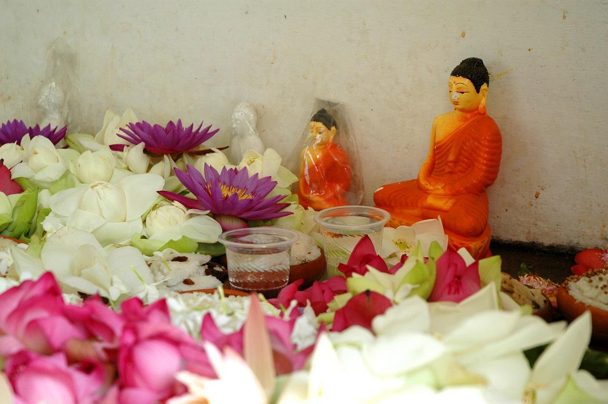 Offerte al tempio di Anuradhapura: viaggio in Sri Lanka fai-da-te