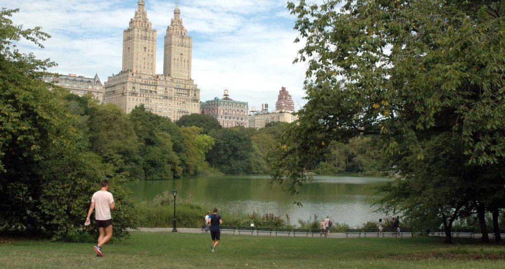 Central Park: cosa vedere a New York in 7 giorni