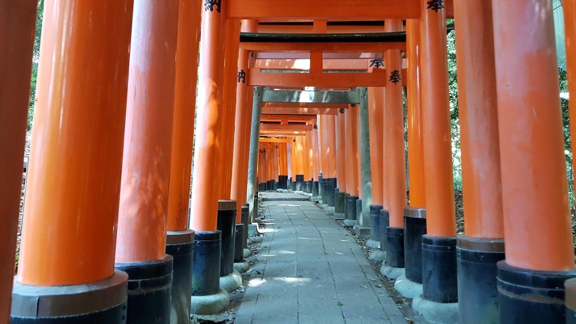 Fushimi-Inari Taisha_torii_giappone