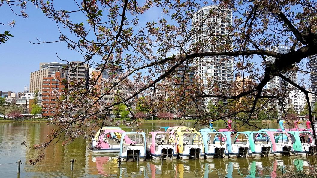 diario di viaggio in giappone_parco ueno a tokyo