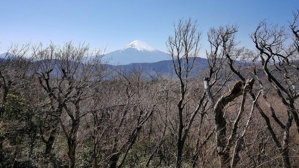 monte fuji_hakone_diario di viaggio giappone