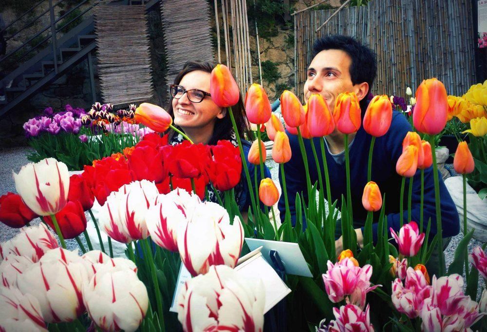 tulipani all'orto botanico di bergamo
