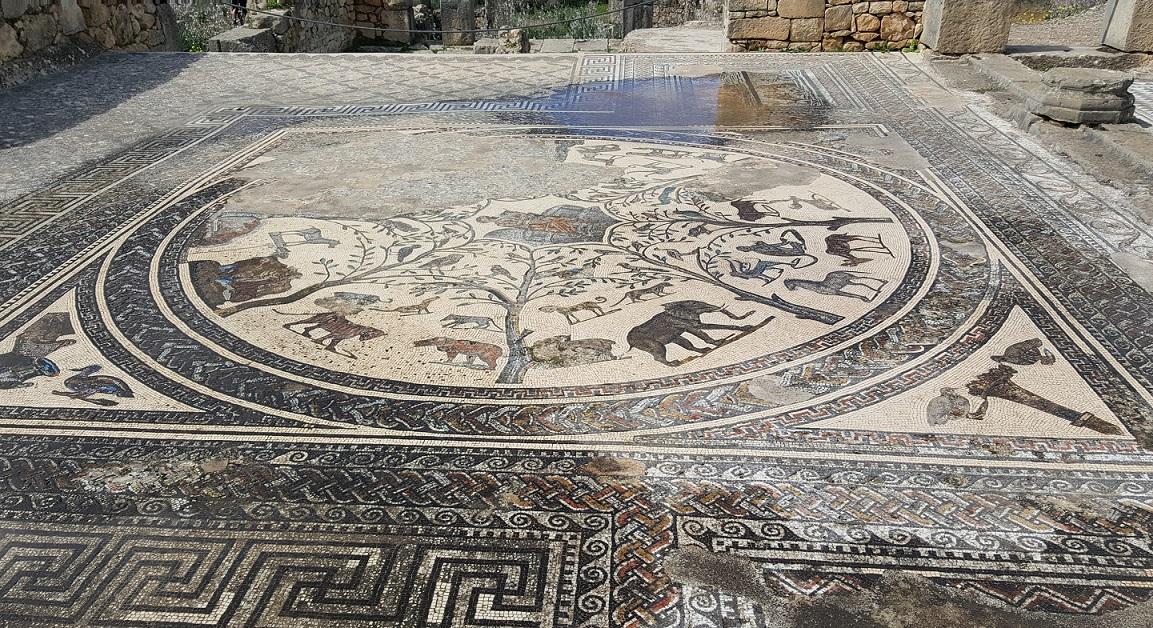 Mosaici di volubilis in marocco_meknes e fes
