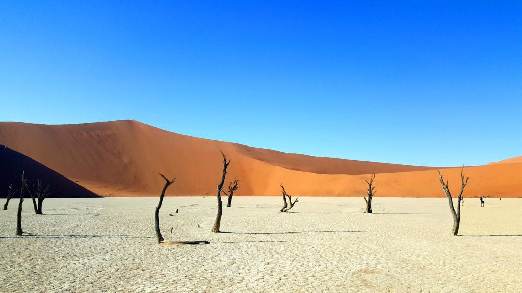 deadvlei_sossusvlei_sesriem_viaggio in namibia