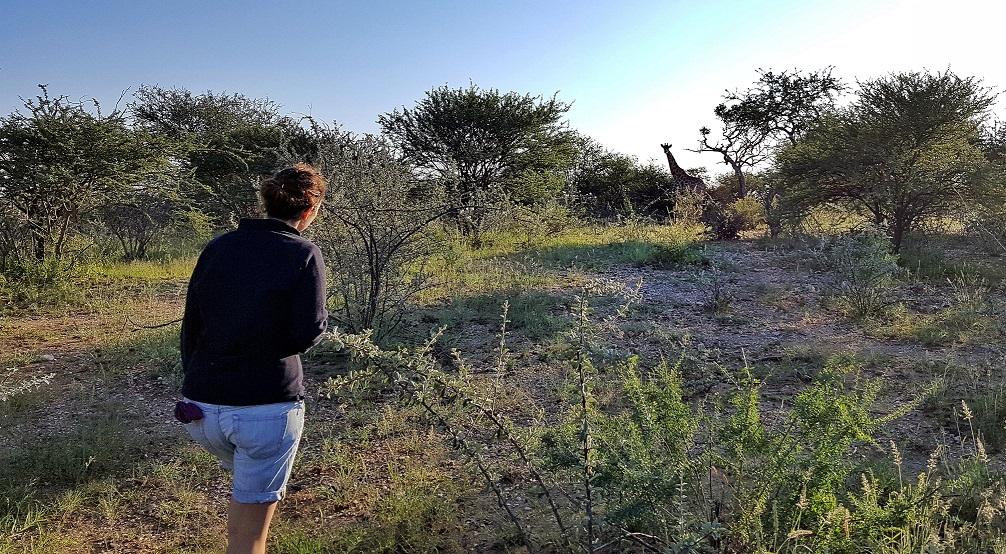 giraffa_namibia