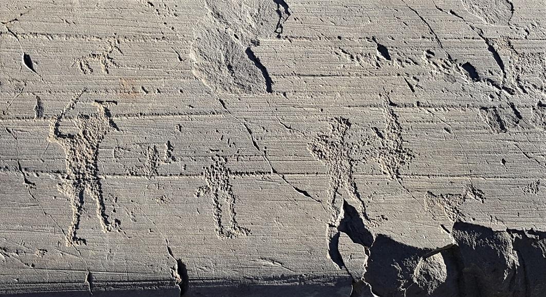 Incisioni rupestri degli antichi camuni in Valle Camonica
