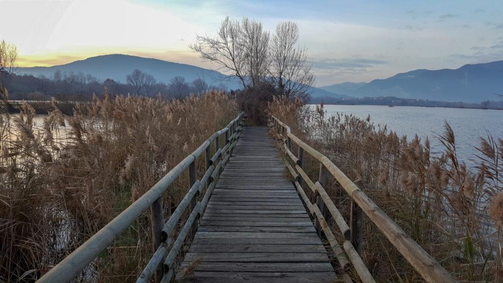 passerelle_Torbiere del Sebino_riserva naturale_percorso_itinerario