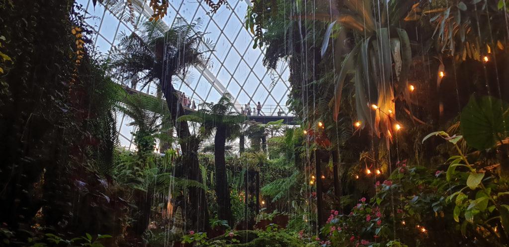 L'interno di una serra dei Gardens by The Bay