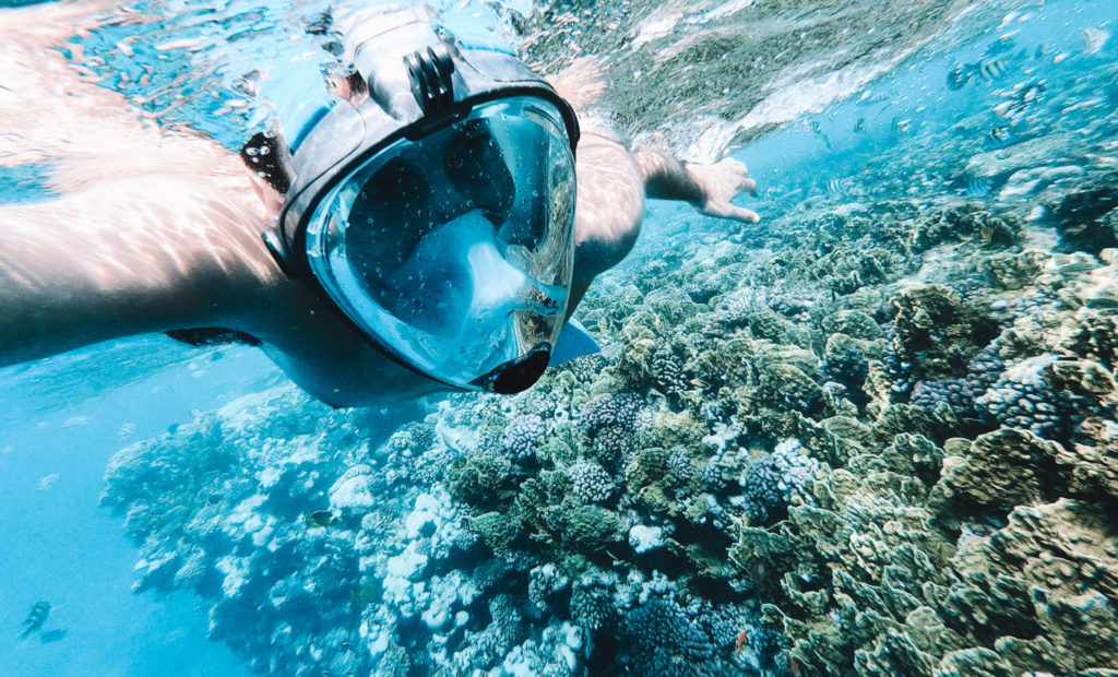 ras mohamed snorkeling barriera corallina