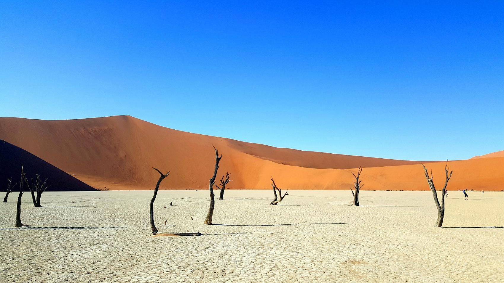 dove andare in viaggio autunno 2020 namibia