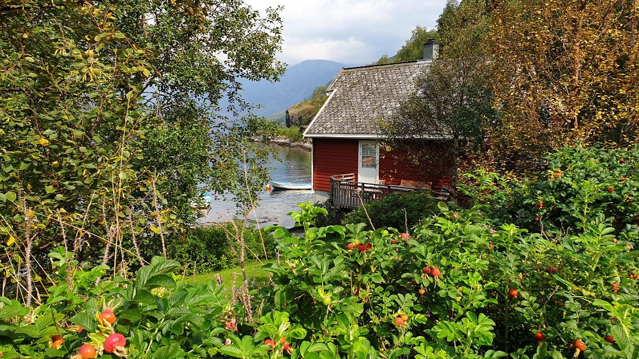 flam norvegia instagrammabile foto cosa fare