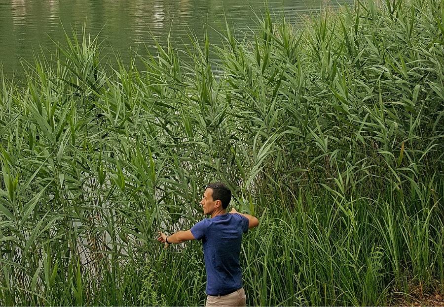 canne sul lago di endine in provincia di bergamo
