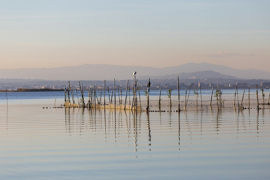 riserva naturale di Albufera al tramonto