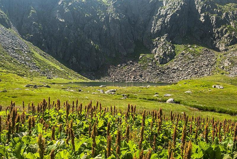 Lago di Bos nella Valsaviore di Brescia
