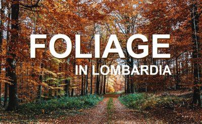 foliage in lombardia_cosa fare_passeggiate in autunno
