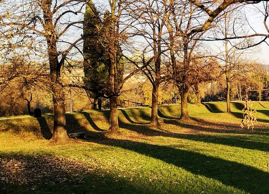 parco delle mura di verona_passeggiate natura