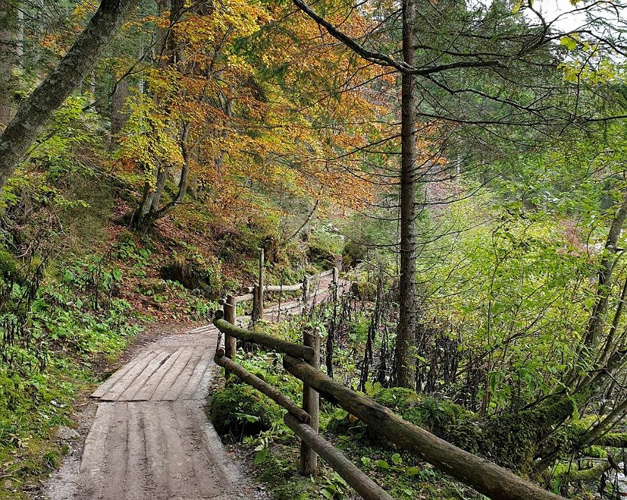sentiero_giro del lago_trekking