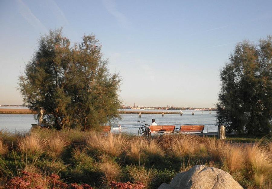 parco san giuliano_venezia_passeggita nella natura