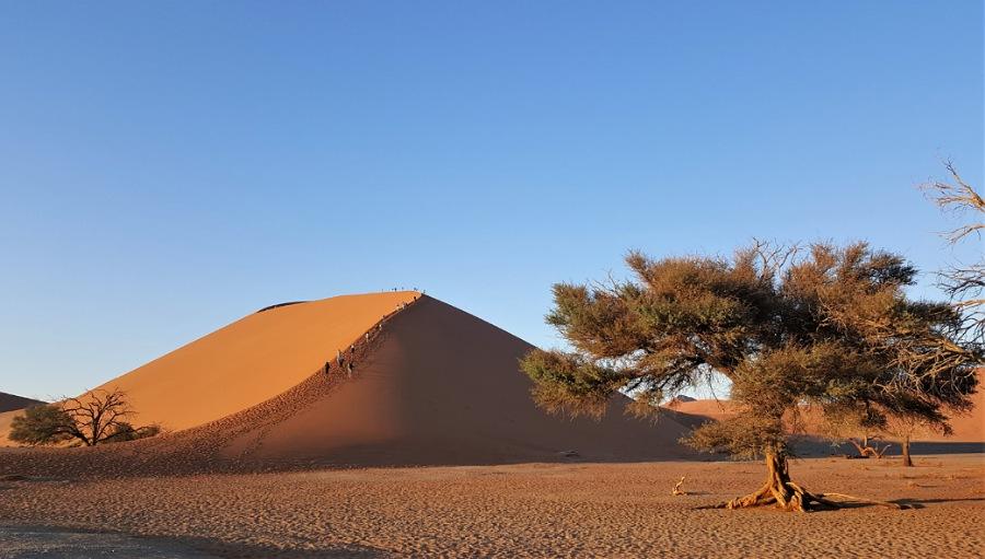 duna 45_sossusvlei_deserto del namib